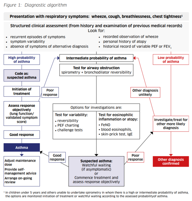 Diagnostic algorithm for asthma